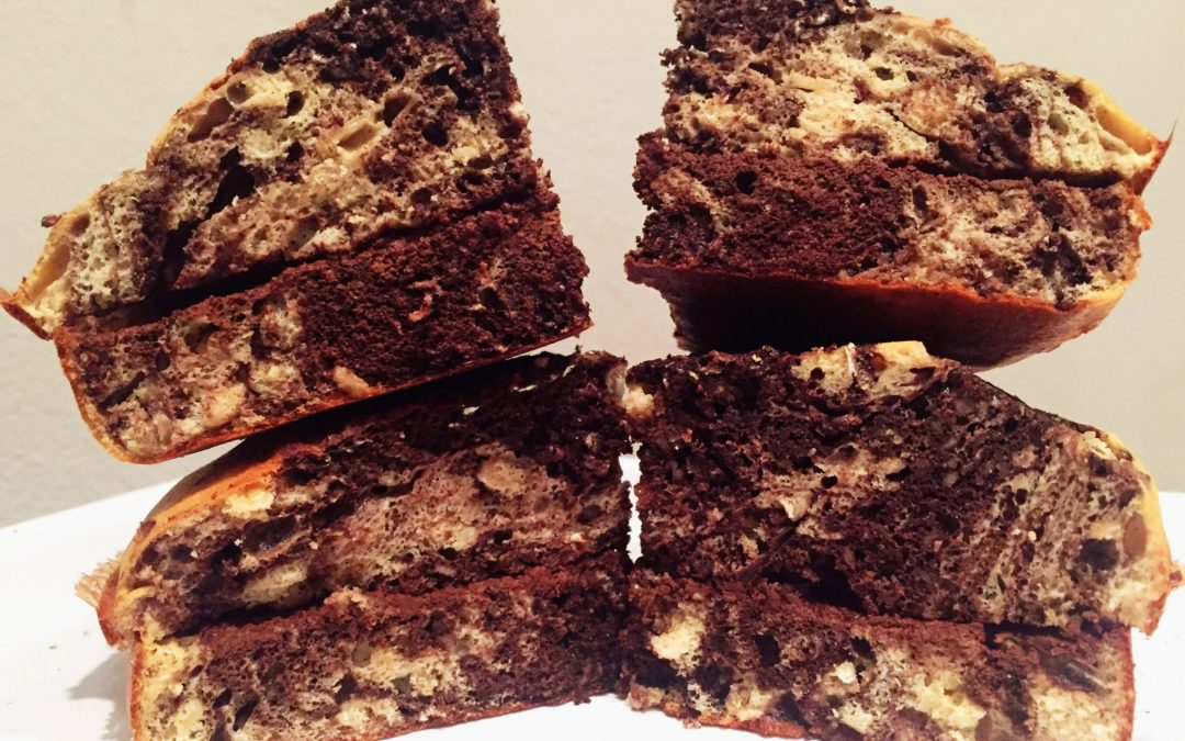 Torta variegata proteica